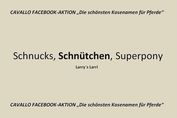 CAV Kosenamen Leserfotos 2014 - Schnütchen