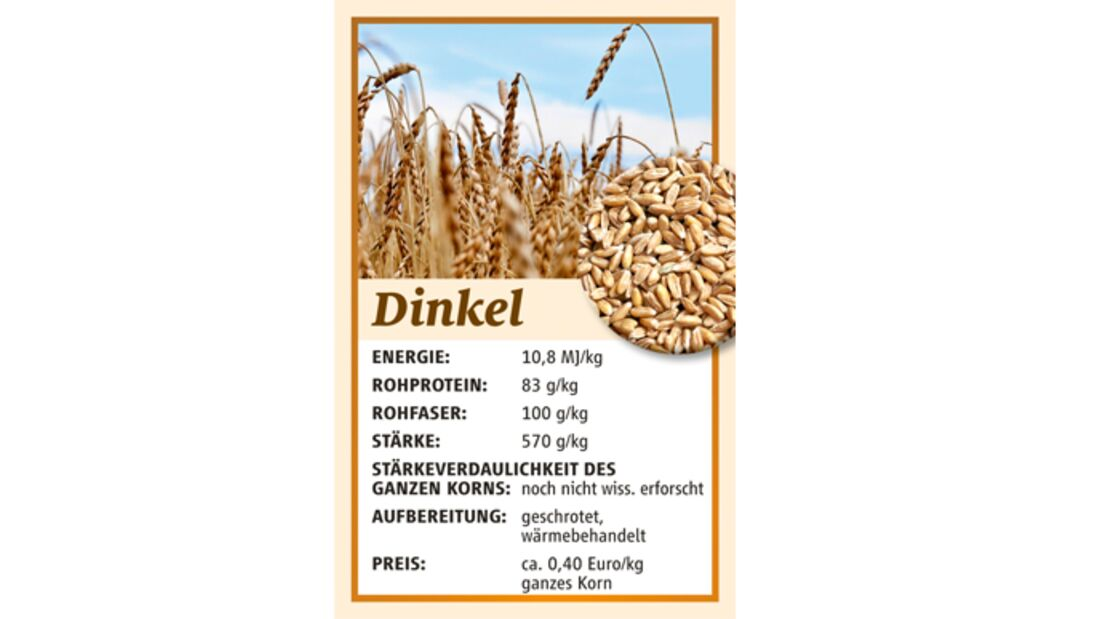 CAV Kraftfutter Hafer Mais Gerste Müsli - Dinkel