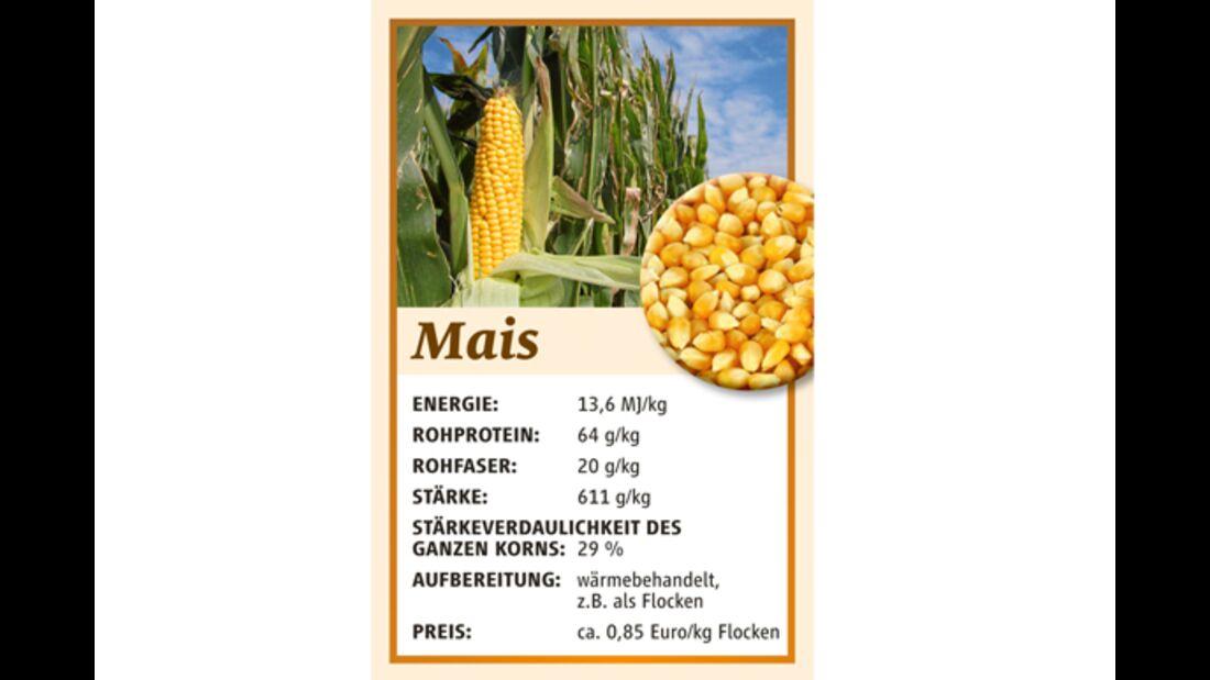 CAV Kraftfutter Hafer Mais Gerste Müsli - Mais