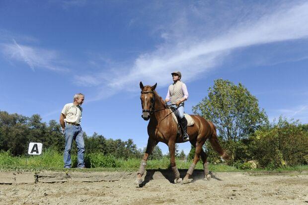 CAV Lameness Locator Tierarzt Reitplatz Dressur