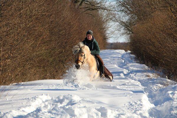 CAV Leserfotos Pferde im Frühling 2013 25