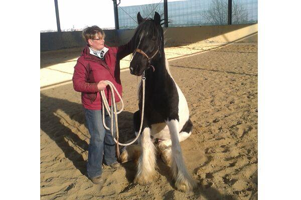CAV Leserfotos Pferde im Frühling 2013 3