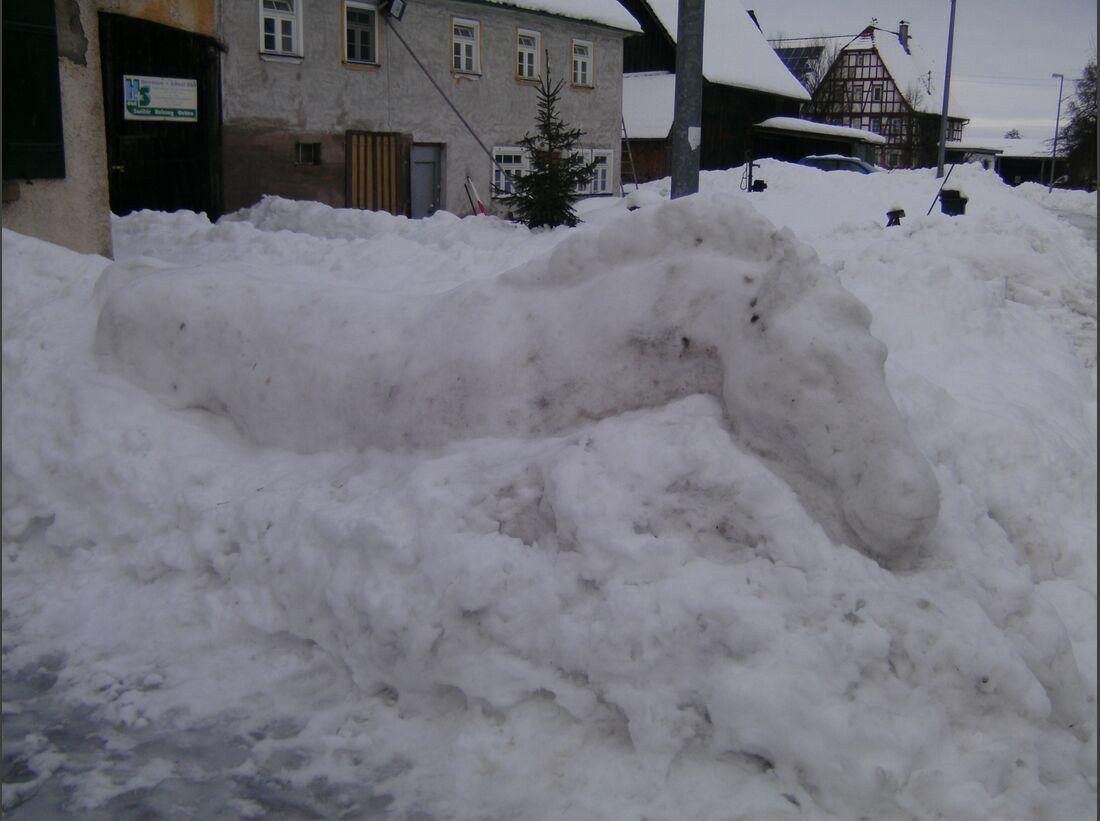 CAV MS Pferde im Winter_002 (JPG)