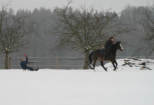 CAV MS Pferde im Winter_6_Mail (jpg)