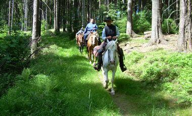 CAV MS Weserbergland zu Pferd_02 (jpg)