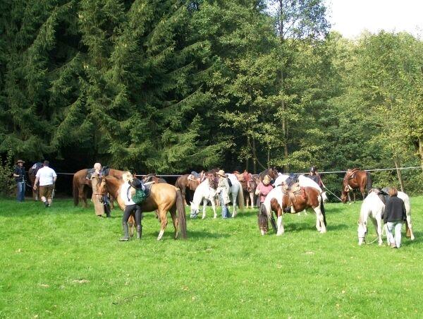 CAV MS Weserbergland zu Pferd_10 (JPG)