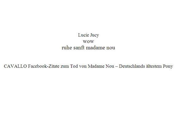 CAV Madame Nou Shetty Shetlandpony tot Zitat