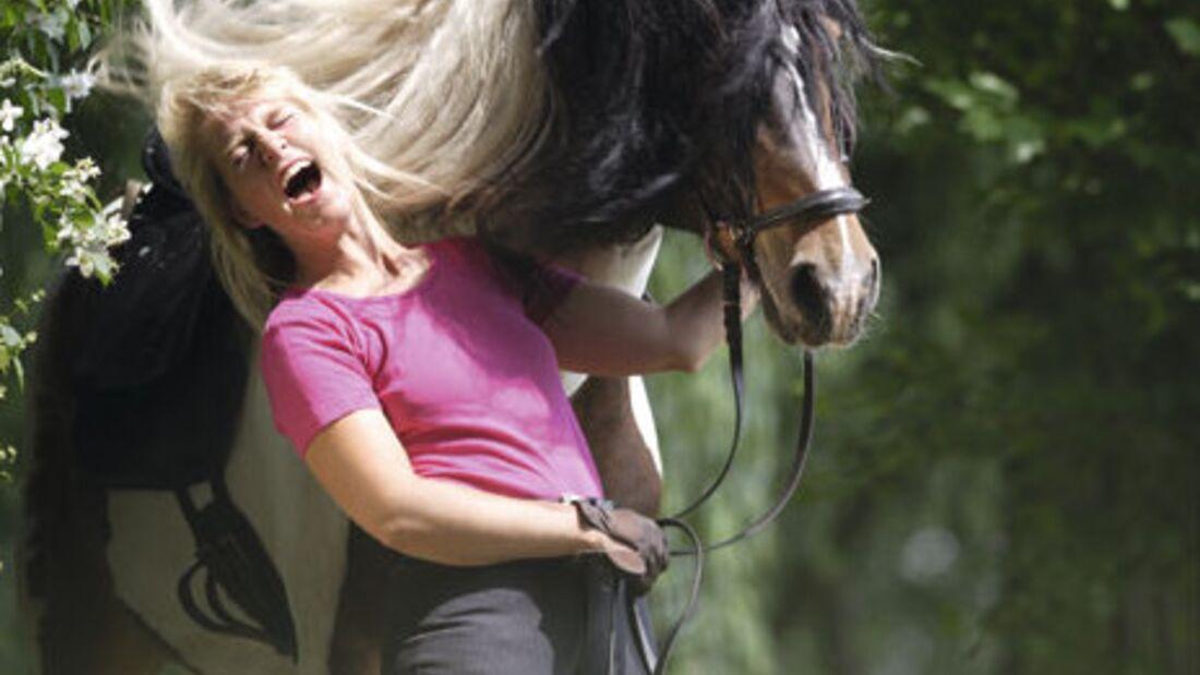 CAV Mähne Pferd Kopf