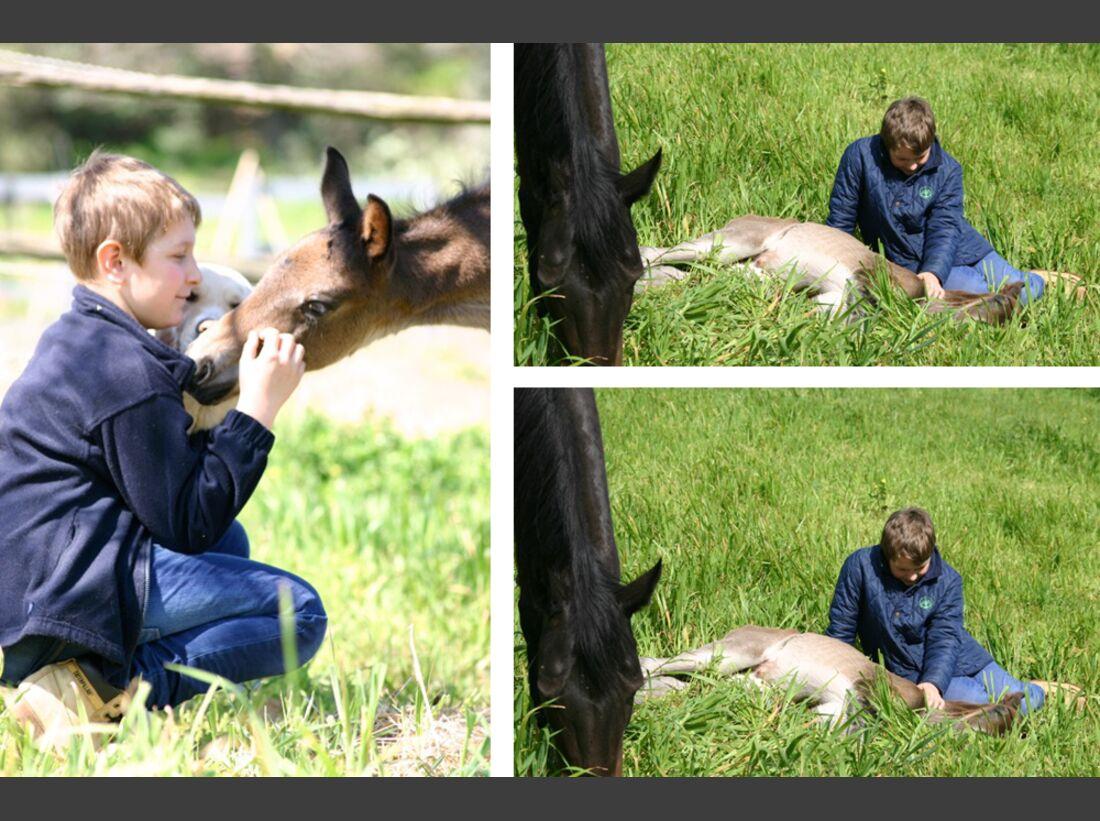 CAV Maenner lieben Pferde Katarina Schwartau