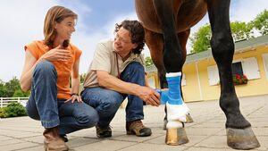 CAV Medizin Tierarzt Bester Doc Body Check 1