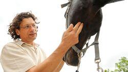 CAV Medizin Tierarzt Kopf Bingold
