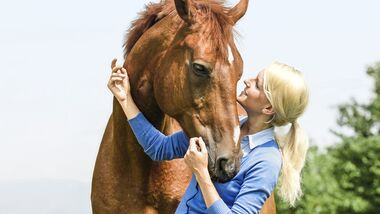 CAV Mensch kuschelt mit Pferd