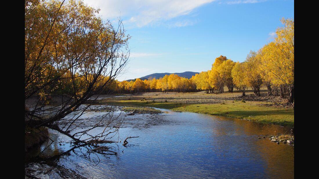 CAV Mongolei Wanderreiten 1