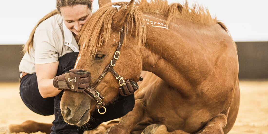 CAV Mustang Makeover Gabor Goldeneye 2