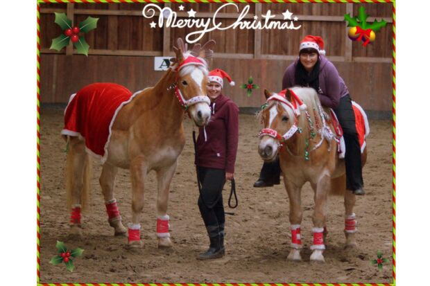 CAV Nikolaus mit Pferden Cindy Leipholz