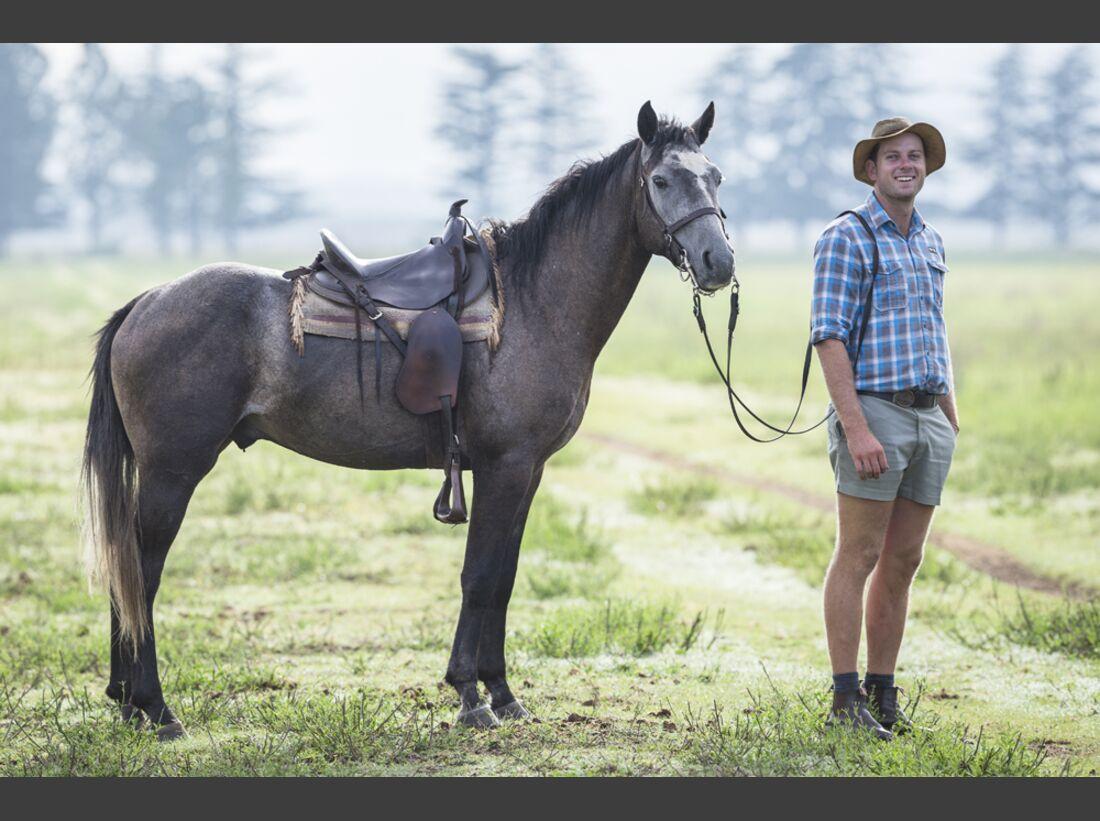 CAV Nooitgedachter Rasse Pferderasse 10