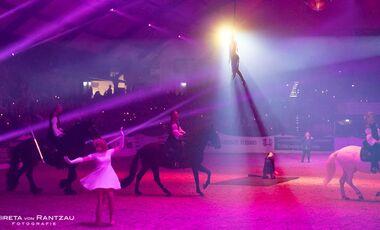 CAV Nordpferd 2019