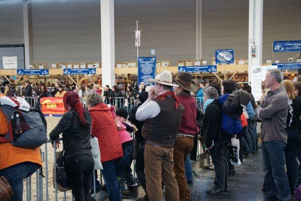 CAV Pferd Bodensee Messe Friedrichshafen _02