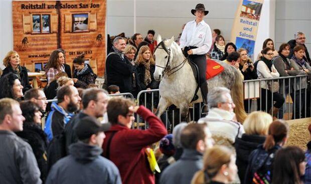 CAV Pferd Bodensee Messe Friedrichshafen _04