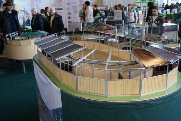 CAV Pferd Bodensee Messe Friedrichshafen _09