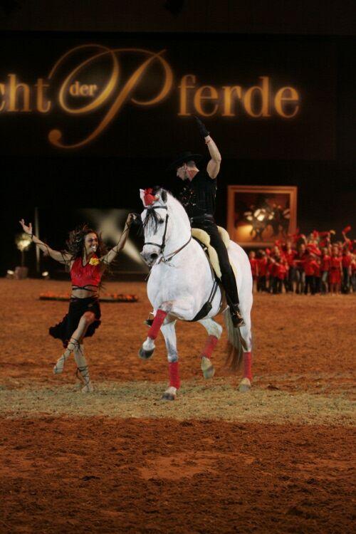 CAV Pferd & Jagd 2012 Show Jubin