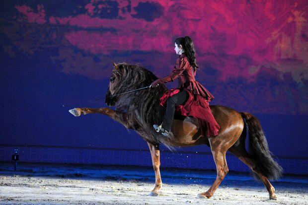 CAV Pferd & Jagd 2012 Sylvie von den Montagnetten