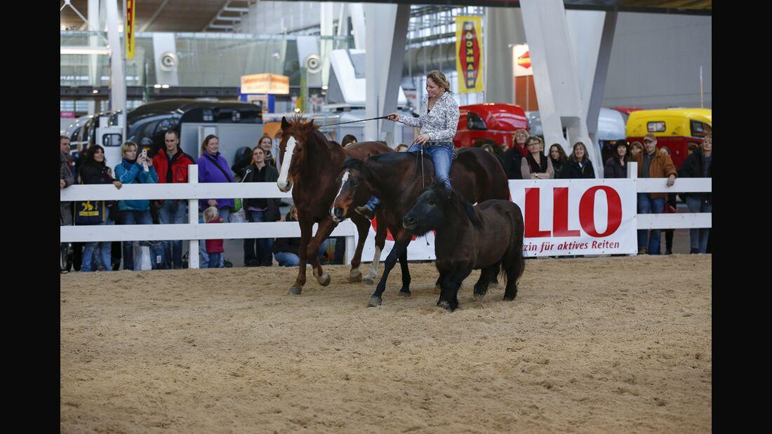 CAV-Pferd-und-Jagd-2013-15 (jpg)