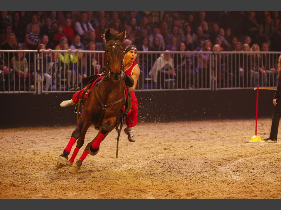 CAV-Pferd-und-Jagd-2013-75 (jpg)