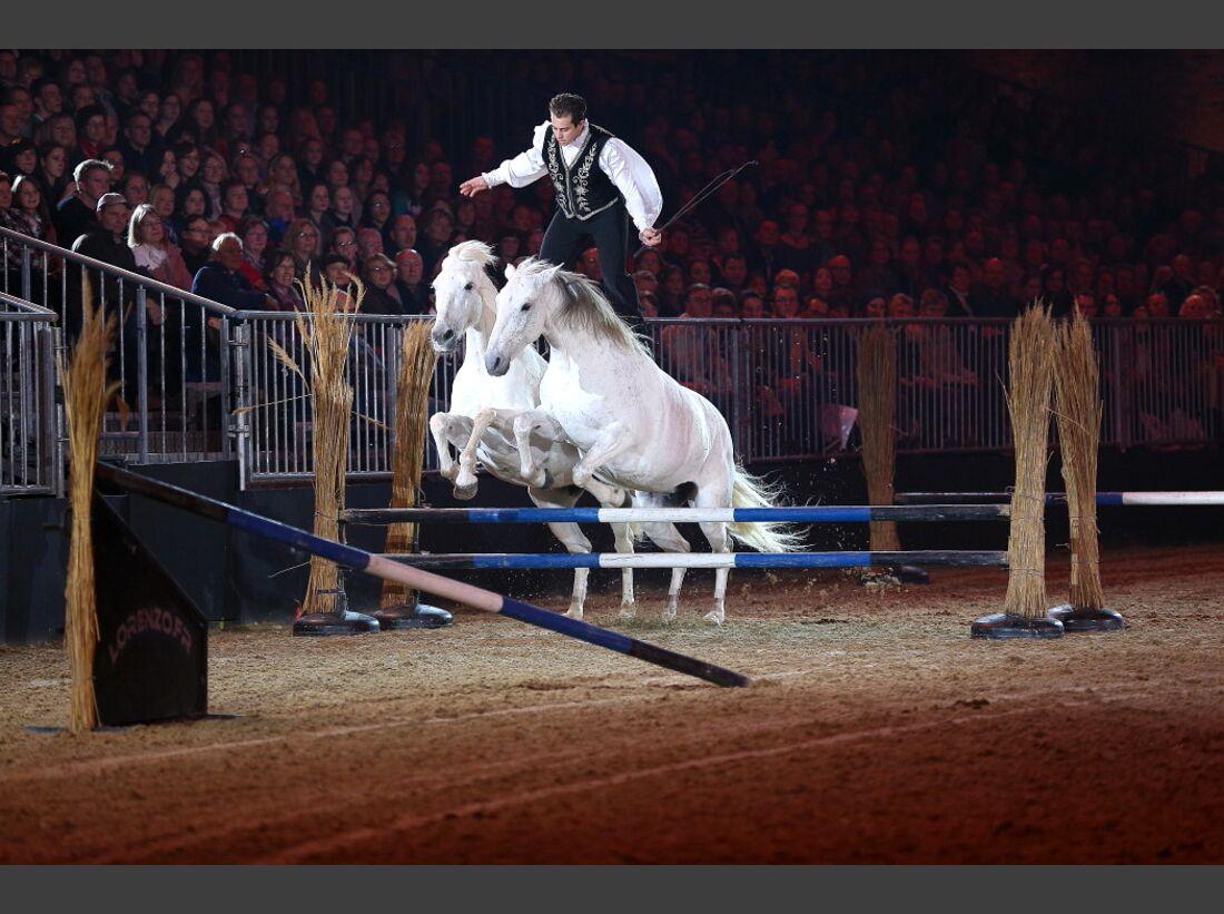 CAV Pferd und Jagd 7