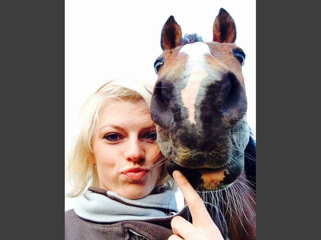 CAV-Pferde-Selfie-Leseraktion-2014-Katrin-Foerster (JPG)