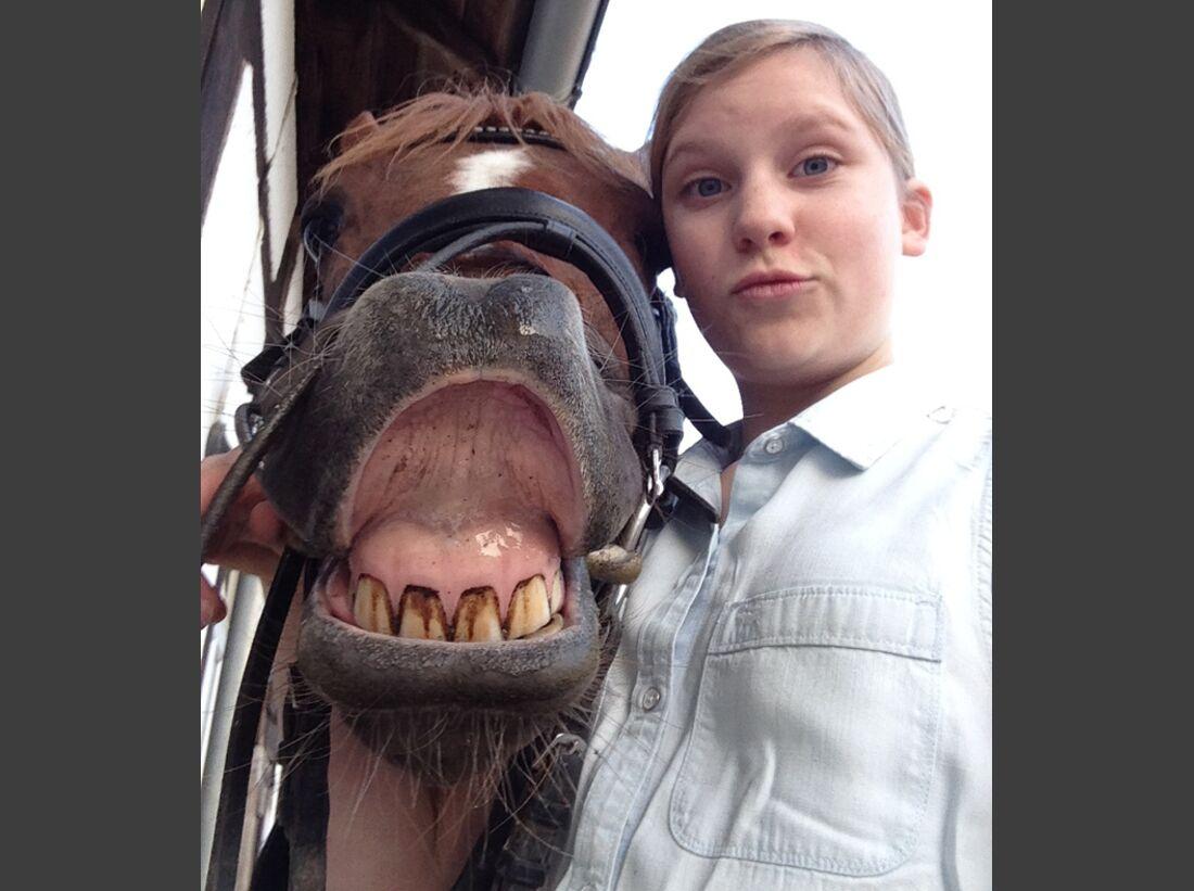 CAV-Pferde-Selfie-Leseraktion-2014-Megan-Boekhout (jpg)