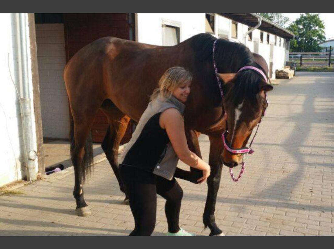 CAV-Pferde-Selfie-Leseraktion-2014-Michelle-Ysabel-Buchmann (jpg)
