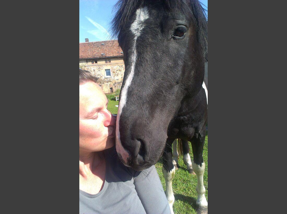 CAV-Pferde-Selfie-Leseraktion-2014-Pia-Skolicki (jpg)