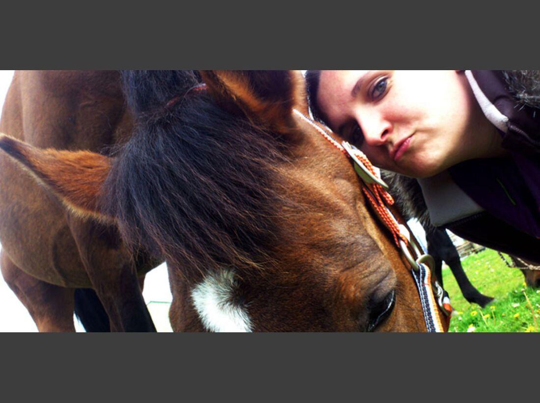 CAV-Pferde-Selfie-Leseraktion-2014-Saskia-Christiansen (jpg)