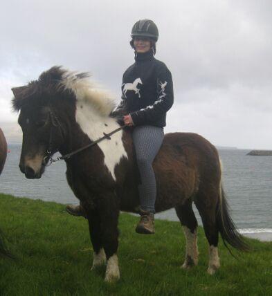 CAV Pferde Senioren Färöer Pony Stute Blanka  MS
