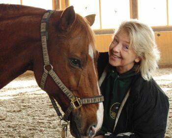 CAV Pferde Senioren im Doppelpack  MS