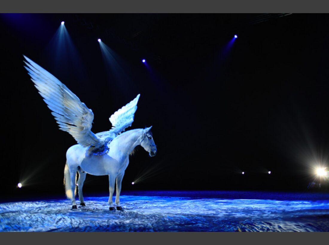 CAV Pferde-Show André Heller Magnifico 07