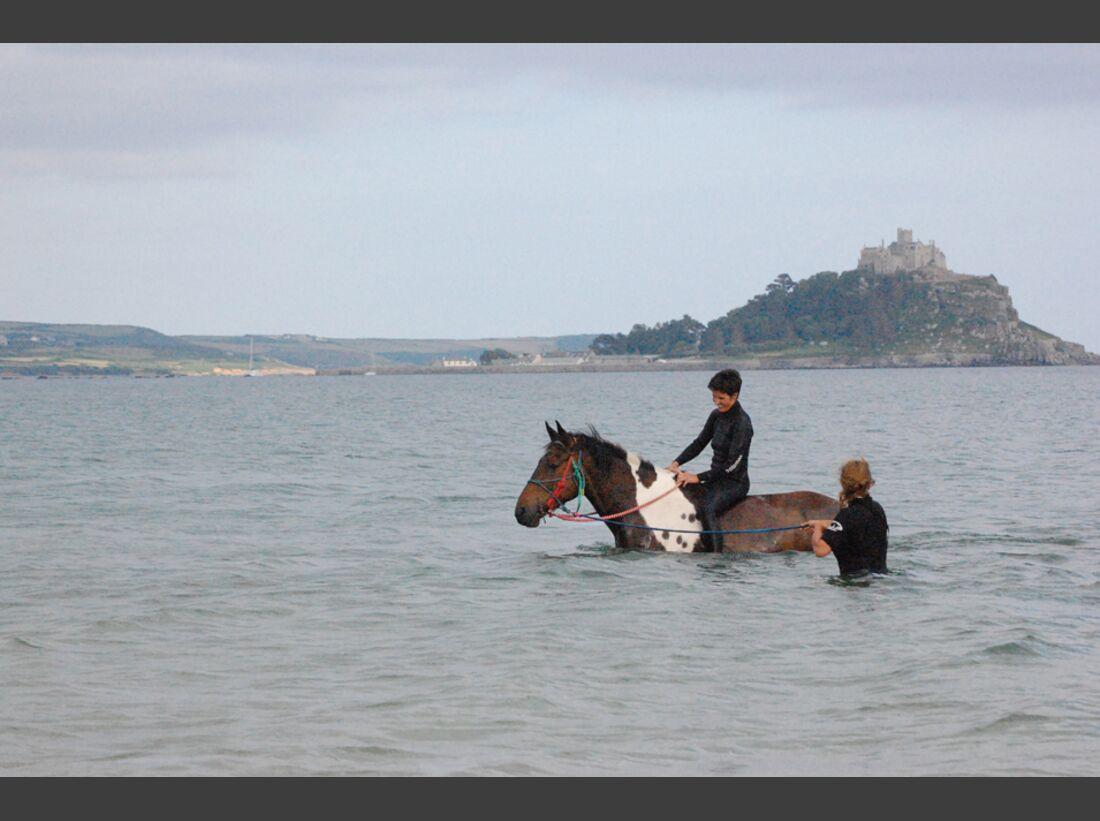 CAV-Pferde-beim-schwimmen-Eva-Dinnessen