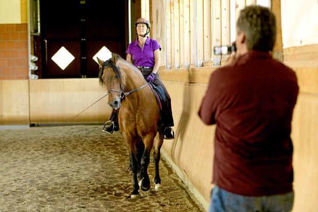 CAV Pferde filmen Video Camcorder Armin Ulrich