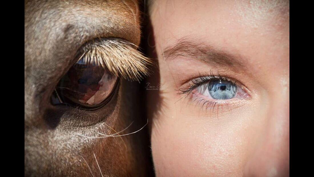 CAV Pferdeaugen Isabel Montag
