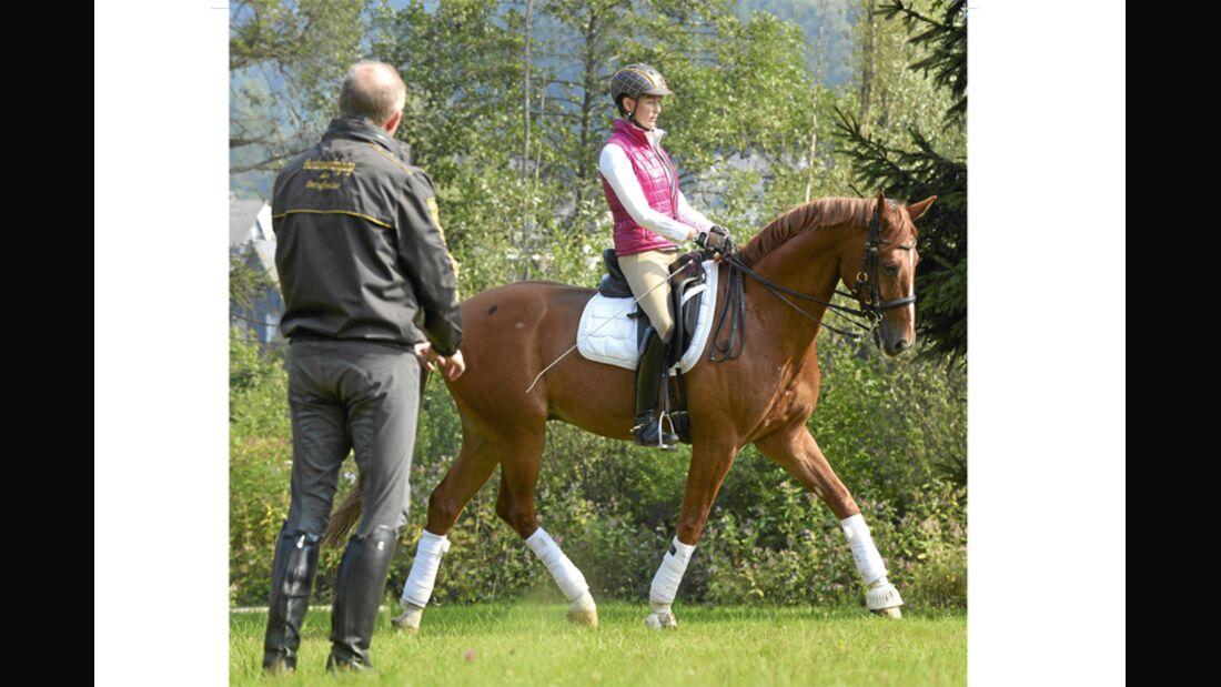 CAV Pferdekenner Burkhard Jung Dressur 1