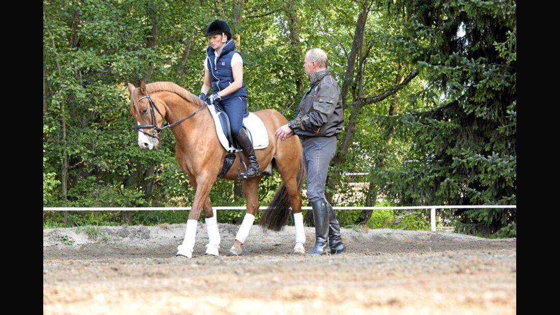 CAV Pferdekenner Burkhard Jung Dressur 4