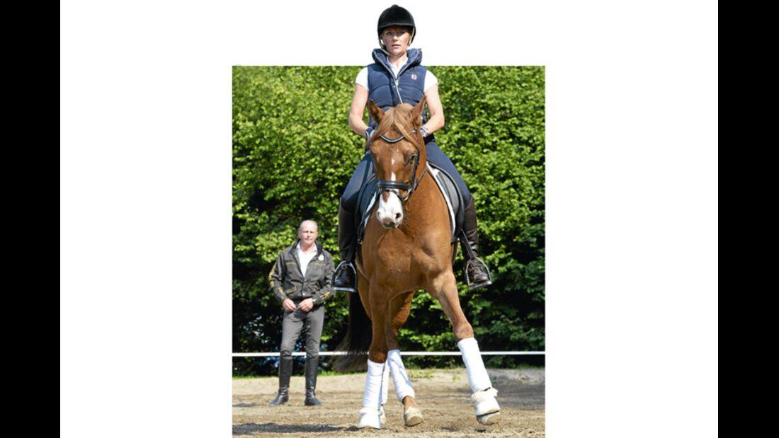 CAV Pferdekenner Burkhard Jung Dressur 6