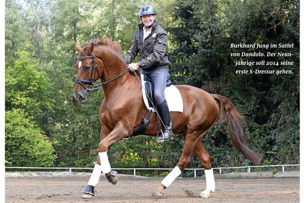 CAV Pferdekenner Burkhard Jung Dressur 7