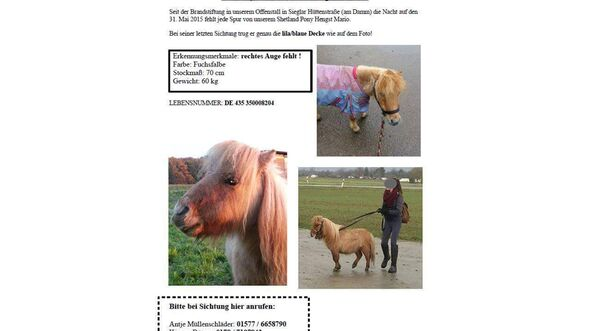 CAV Pferderipper Missbrauch Mario Deborah Frick 1