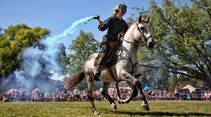 CAV Pferdeshow Horses Heros Hero Merkel Choco