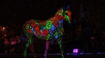 CAV Pferdeshow Horses Heros Hero Merkel leuchtendes Pferd