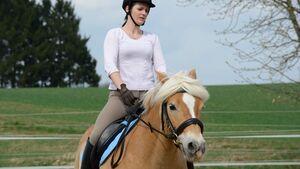CAV Pferdetausch 11