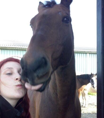 CAV Pferdezungen Zunge Leserfotos