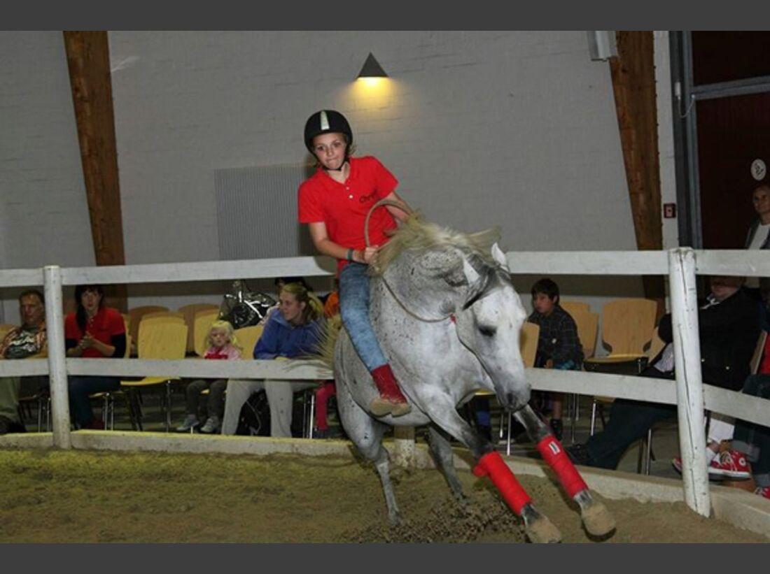 CAV Pony Leserfotos 16